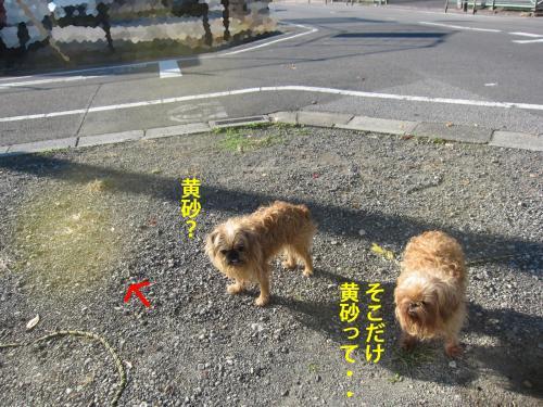2_convert_20121112131813.jpg