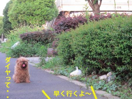 3-0_convert_20120706125021.jpg