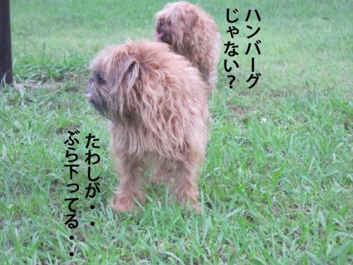 3-0_convert_20120720131442.jpg