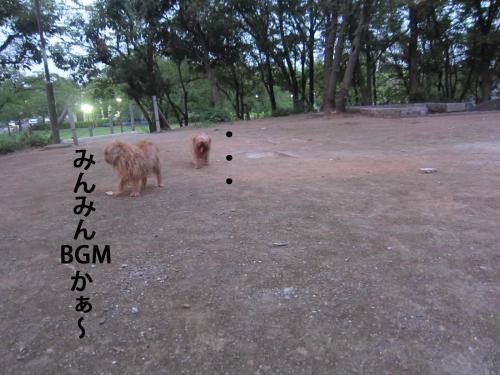 3_convert_20120803132143.jpg