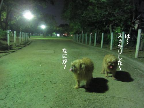 3_convert_20120928162259.jpg