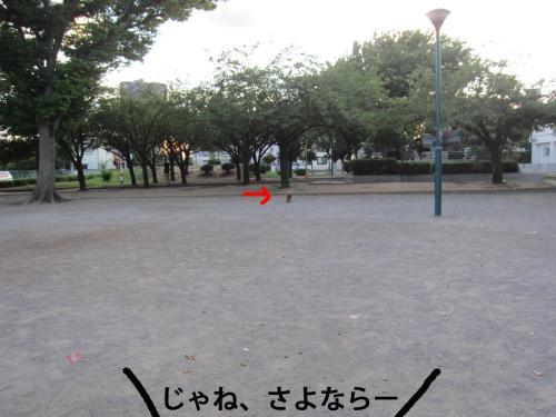 4-0_convert_20120807135834.jpg