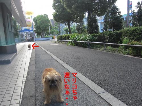 4-0_convert_20120819145711.jpg