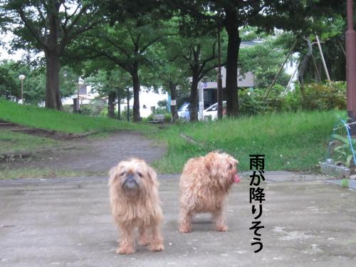 4-D_convert_20120724132219.jpg