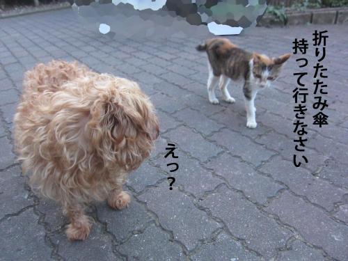 44_convert_20120904144438.jpg