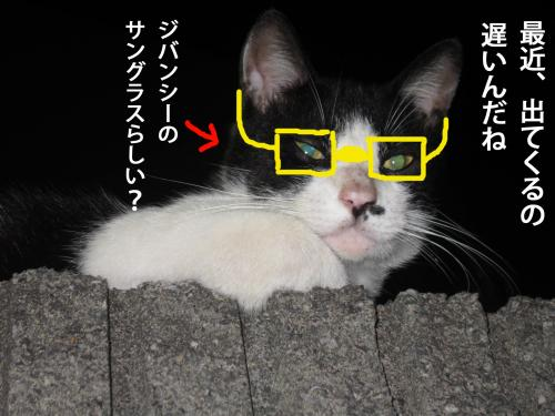 44_convert_20120914175758.jpg