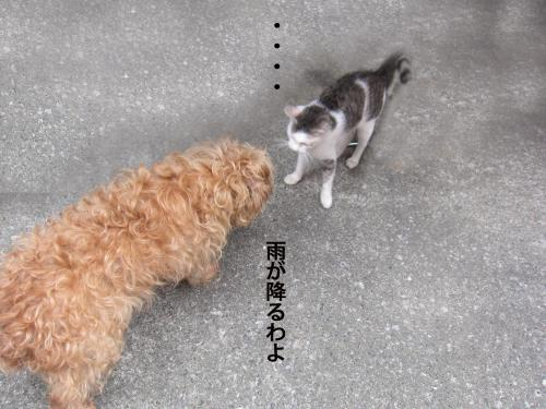 44_convert_20120916152737.jpg