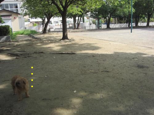 4_convert_20120828132338.jpg