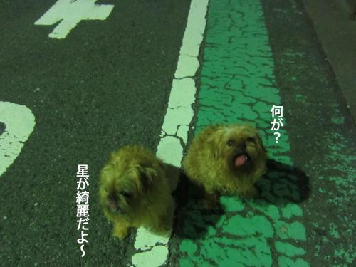 4_convert_20120915142722.jpg