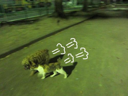 55_convert_20121021161049.jpg
