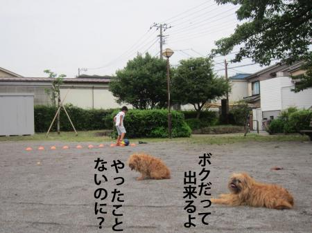 5_convert_20120714121040.jpg