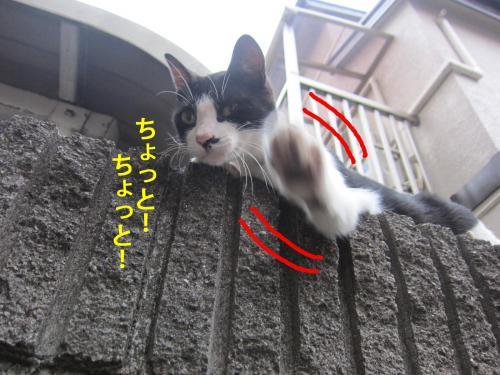 5_convert_20120726132644.jpg
