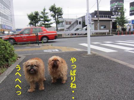6-0_convert_20120706125115.jpg