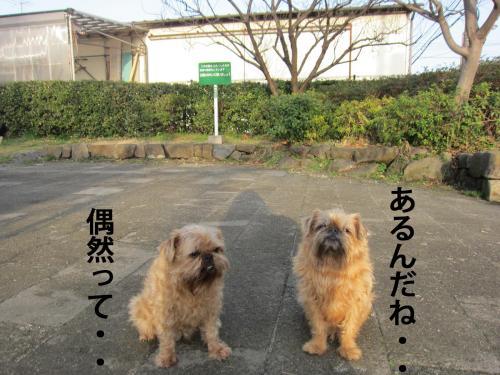 60_convert_20120426095702.jpg