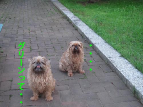 60_convert_20120507103431.jpg