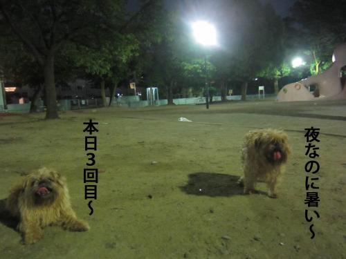 60_convert_20120730134424.jpg
