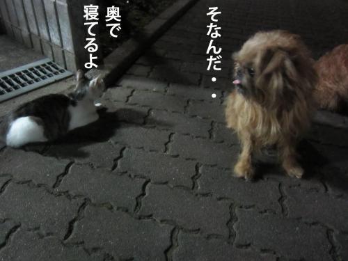 66_convert_20120914154840.jpg