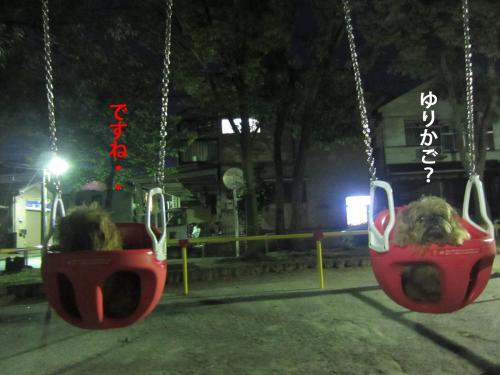 66_convert_20121001145042.jpg