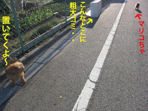 6_convert_20120511094001.jpg