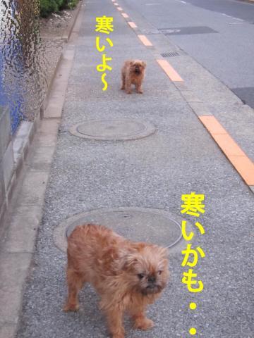 6_convert_20120512101859.jpg