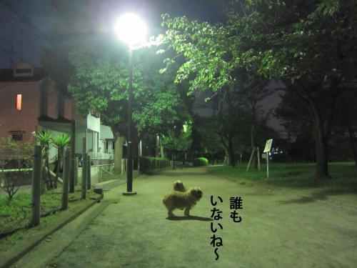 6_convert_20120913150219.jpg