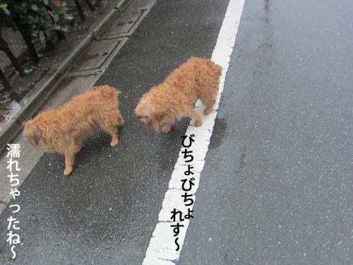 6_convert_20120923142942.jpg