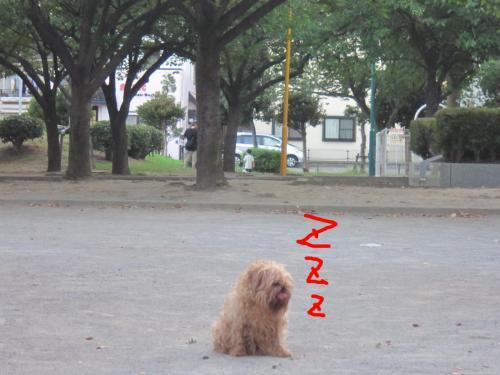 7-0_convert_20120807135932.jpg
