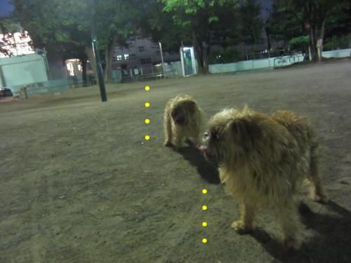70_convert_20120730134441.jpg