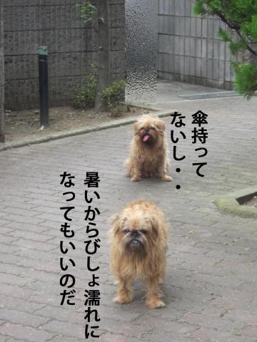 77_convert_20120904144544.jpg