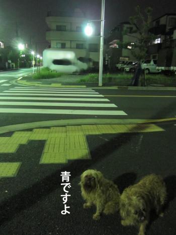 77_convert_20121022145036.jpg