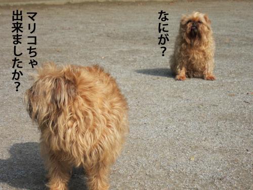 7_convert_20120603105355.jpg