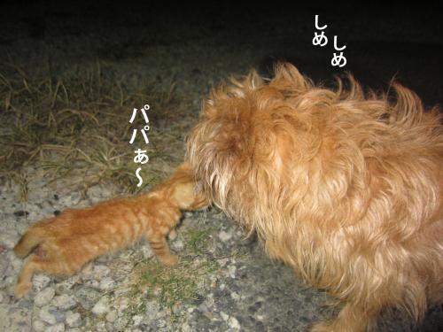 7_convert_20120915142841.jpg