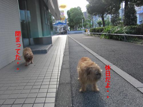 8-0_convert_20120819145817.jpg