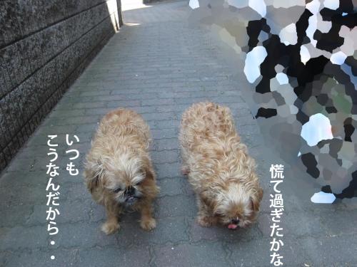 88_convert_20120916152925.jpg