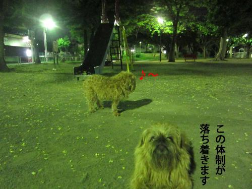 8_convert_20120827134313.jpg