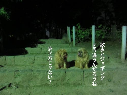 8_convert_20120928162412.jpg