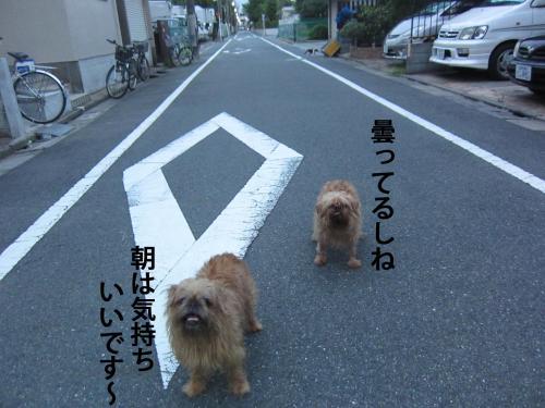 9-0_convert_20120810133713.jpg