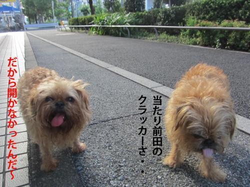 9-0_convert_20120819145838.jpg