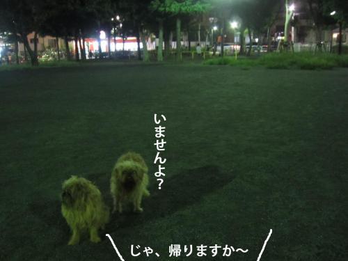 99_convert_20121022145113.jpg