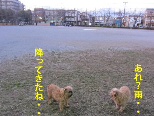 A_convert_20120427095703.jpg