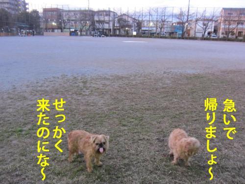 B_convert_20120427095729.jpg