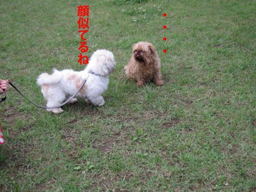 D_convert_20120528104630.jpg