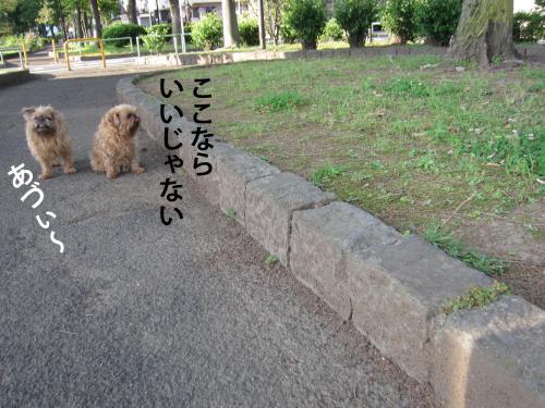 E_convert_20120524103459.jpg