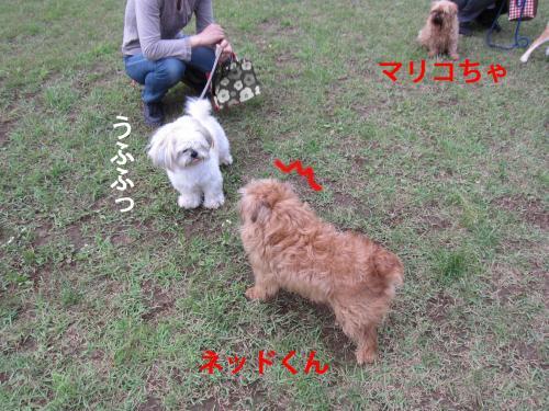 E_convert_20120528104655.jpg