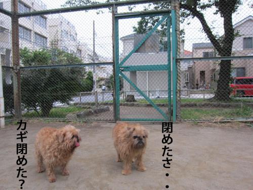 E_convert_20120608104025.jpg
