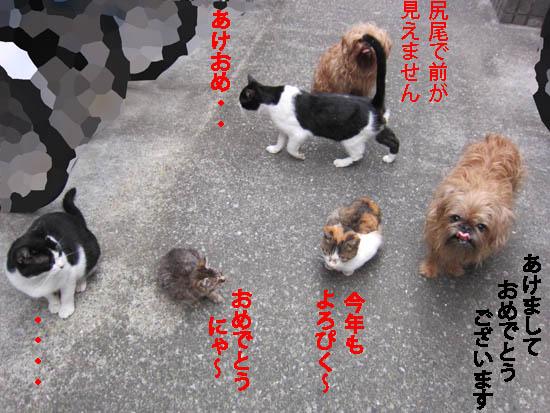 asahi08.jpg