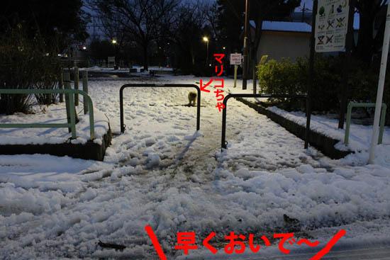 yukieoke5.jpg