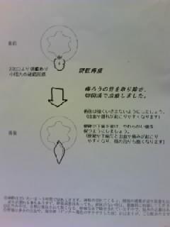 TS3V09360001.jpg