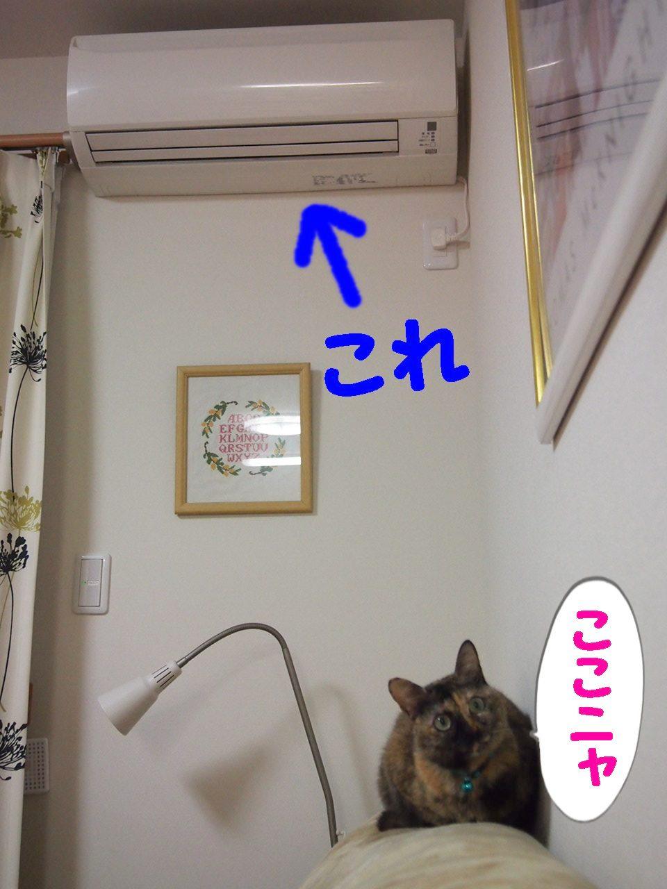 023_20140119090021cde.jpg