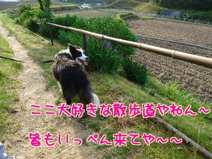 Lxd5NOPbM9GXnBP_20120525191050.jpg